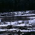 Whistler Misc - 49