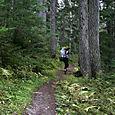 Glacier Crest Trail - 1