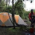 Day 7 - Kili - To Machame - 9