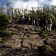 Day 8 - Kili - To Shira - 3