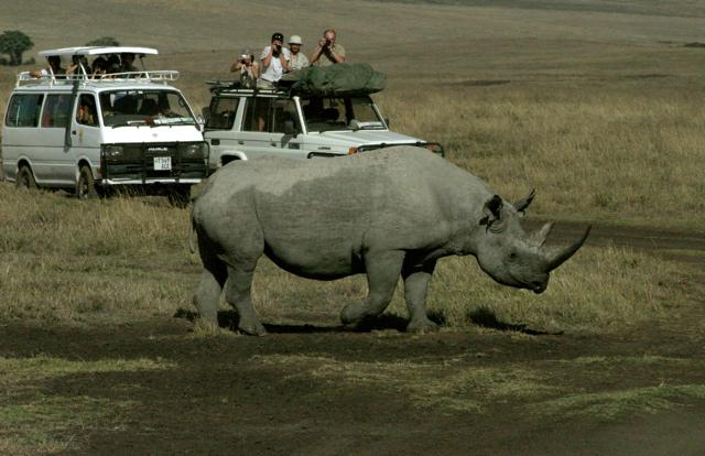 Day 15 - To Ngorongoro Crater - 4
