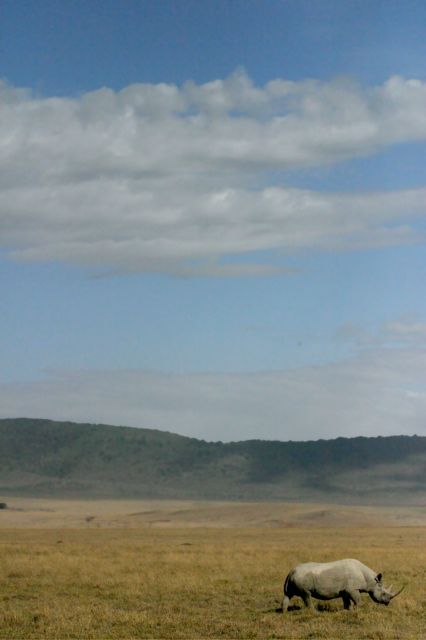 Day 15 - To Ngorongoro Crater - 6