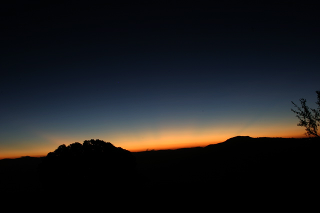 Day 16 - Ngorongoro Crater - 1