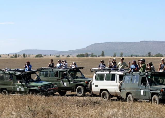 Day 18 - Serengeti - 17