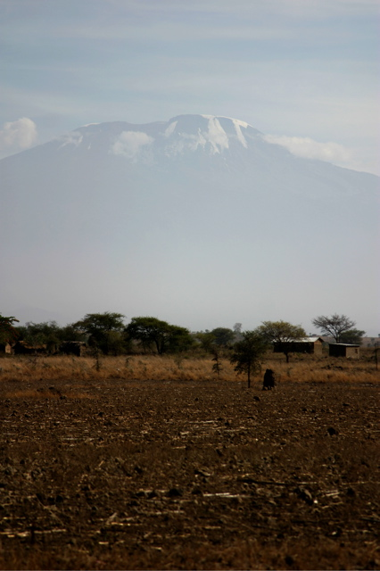 Day 7 - Kili - To Machame - 1