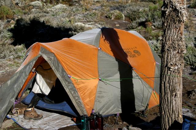 Day 10 - Kili - To Arrow Glacier - 1