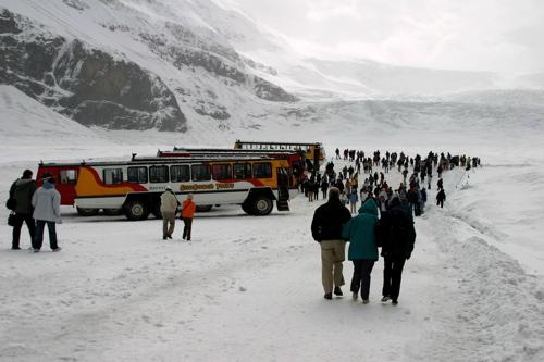 Athabasca Glacier - 7