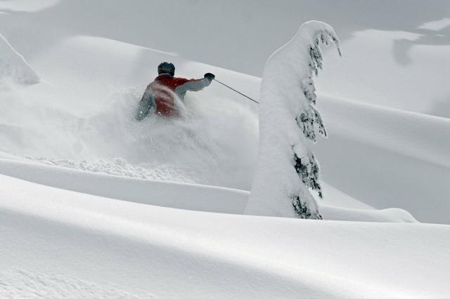 Cat Skiing - 21