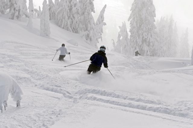 Cat Skiing - 25