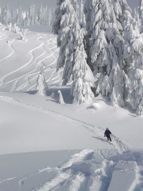 Cat Skiing - 43