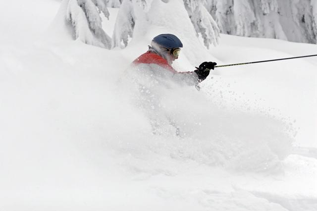 Cat Skiing - 5