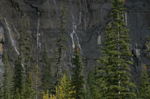 North to Icefields - 24