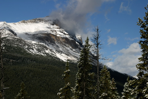 North to Icefields - 3