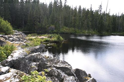 Jane lakes - 4