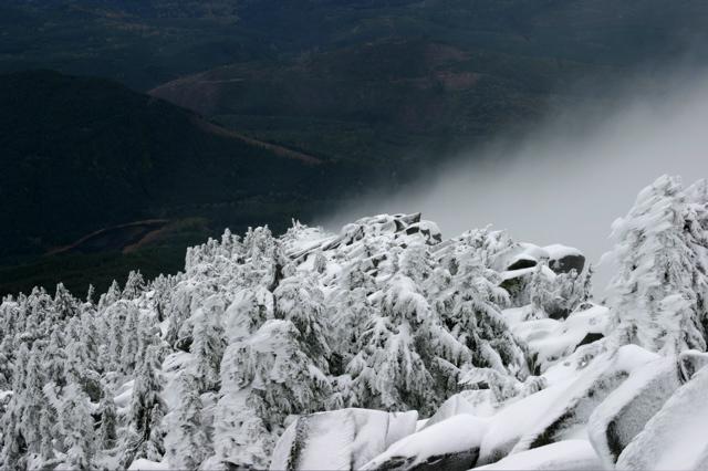 Mt. Pilchuck - 7