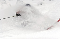 Cat Skiing - 16