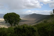 Day 16 - Ngorongoro Crater - 78